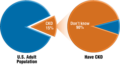Pie charts showing percent of the US population with chronic kidney disease, and percent of those who don't know it
